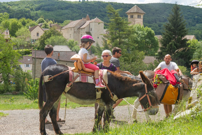 randonner avec des ânes en bourgogne