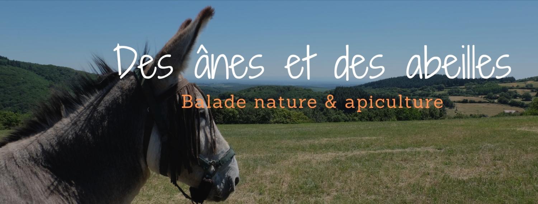 des ânes et des abeillles